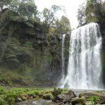 滝巡りをしながら食べ歩きスポットを紹介/大分県 ドライブコース